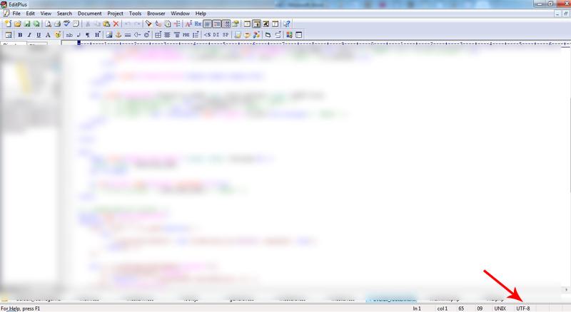 изменение кодировки в EditPlus